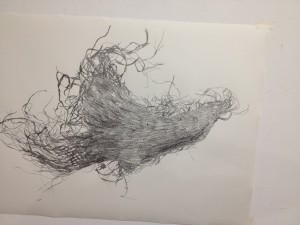 Drawing of a crow from a piece of torn and shredded sacking found in the landscape