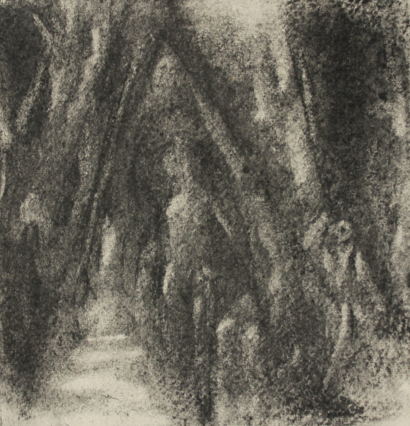 'Death of the ego' charcoal on khadi paper